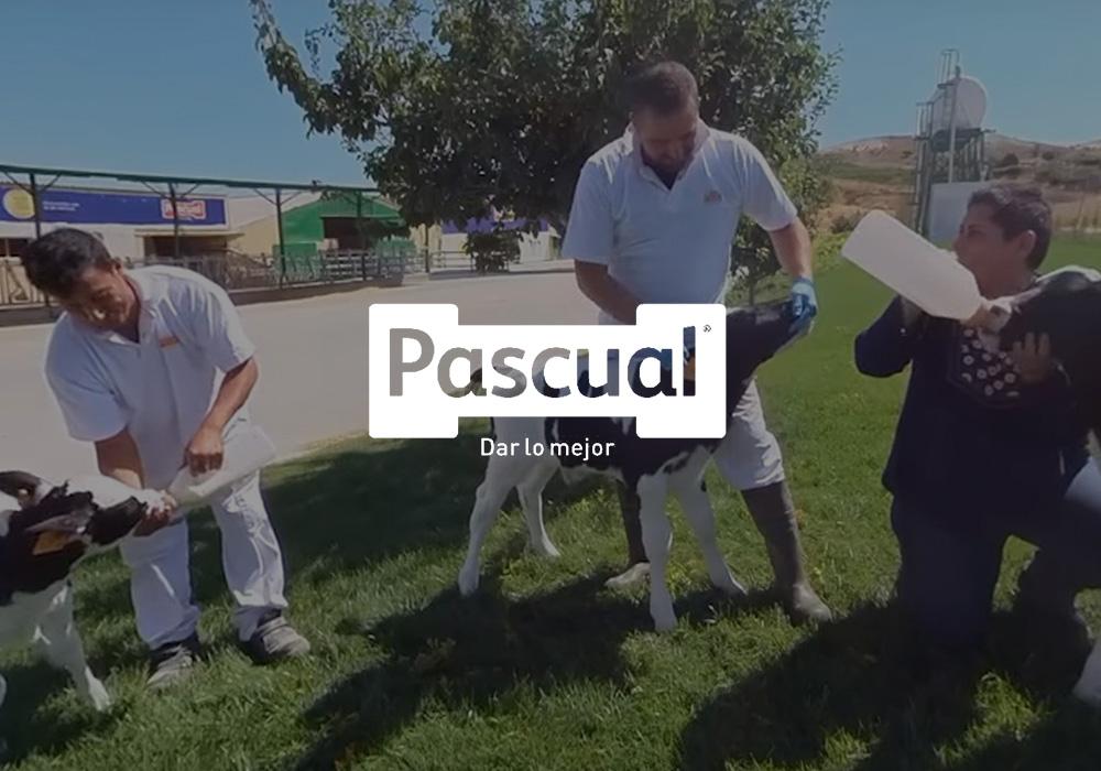Realidad virtual industria Pascual listado   Xperiencia Virtual