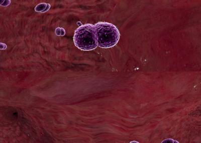 meningococo Bexsero 0-25 screenshot