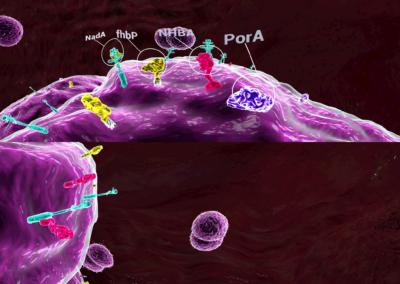 meningococo Bexsero 0-54 screenshot