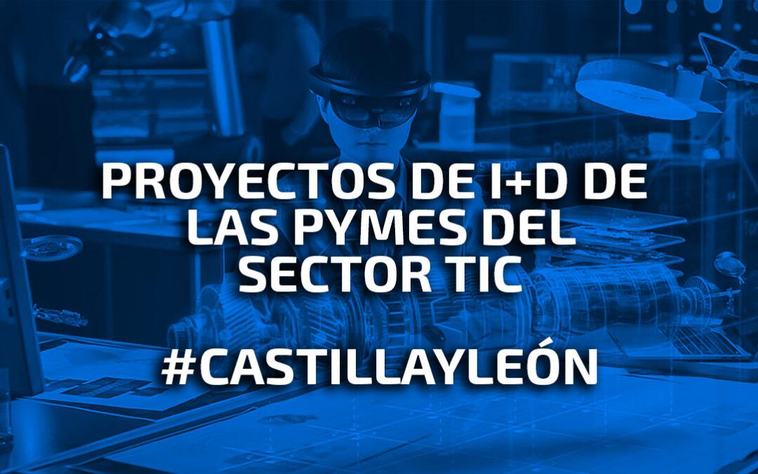 Convocatoria de subvenciones para la realización de proyectos de I+D de las PYMES del sector de las TIC en el ámbito de la comunidad de Castilla y León.
